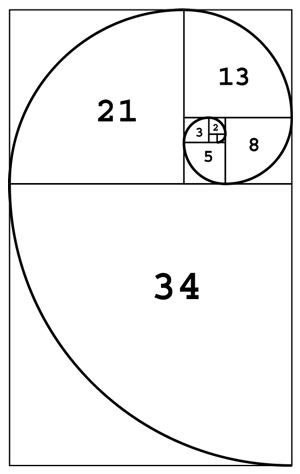 Construction of Fibonacci spiral