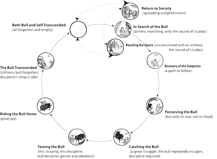 Reconfiguration of the 10-fold circular ox-herding representation into an 8-fold way